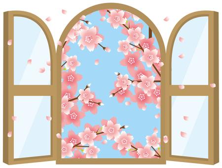 창문 벚꽃
