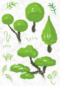 Simple plant parts