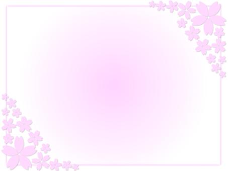 벚꽃 프레임 12