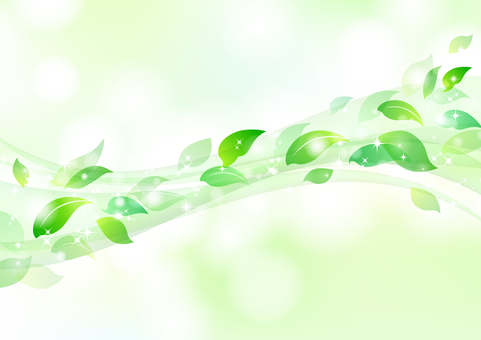 Fresh green material 15