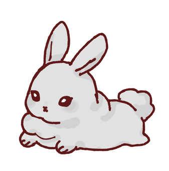 Sleeping rabbit (Netherland Dwarf)