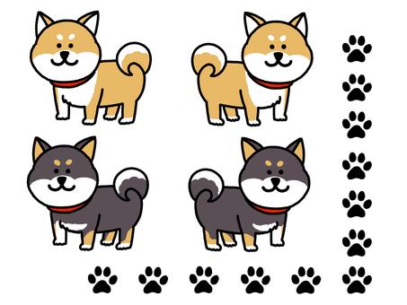 柴犬セット