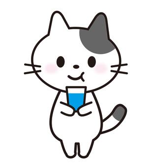 Cat _ gargling