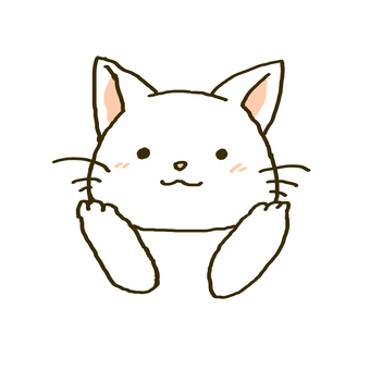 A white cat holding the cheek