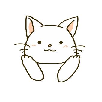 뺨을 억제 흰색 고양이