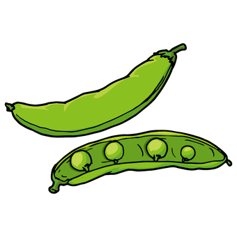 Sayaron dou / Garden pea