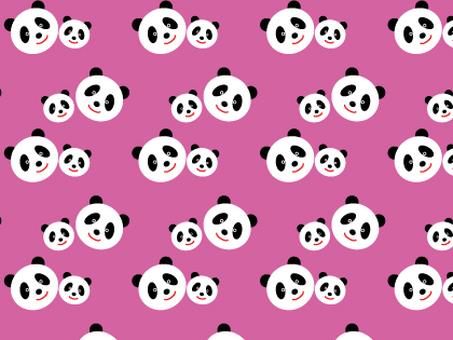 Parent-child Panda chan