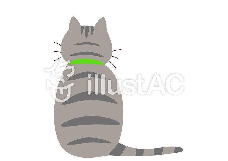 猫後姿猫シリーズアメショイラスト No 1215035無料イラスト