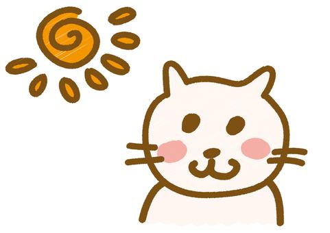 Watching the morning sun _ Neko-chan