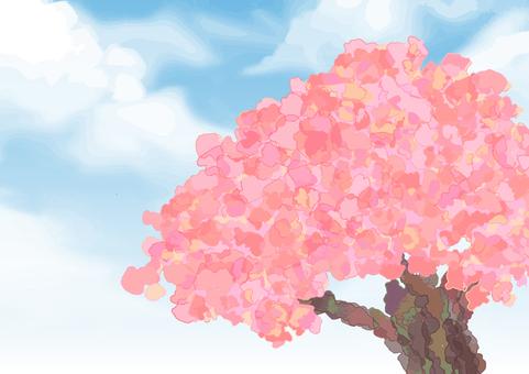 Watercolor Cherry Blossoms
