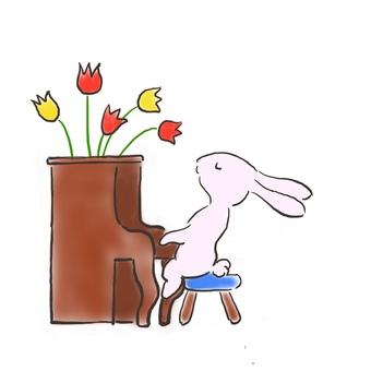 Piano rabbit 35