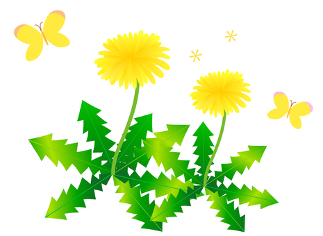 Dandelion and butterfly illustration