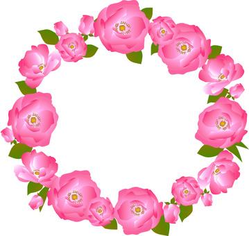 Roses Flower Frame