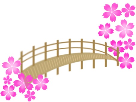 Cherry blossoms and bridges