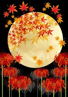 피안 꽃과 보름달