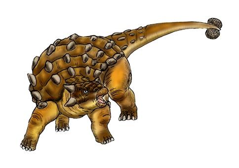 Attack Ankyrrosaurus
