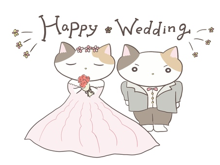 Bride and groom with calico cat