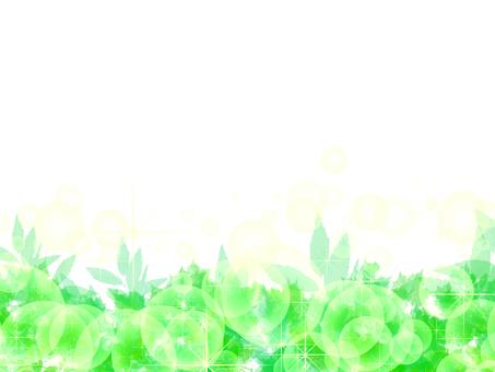 녹색 투명