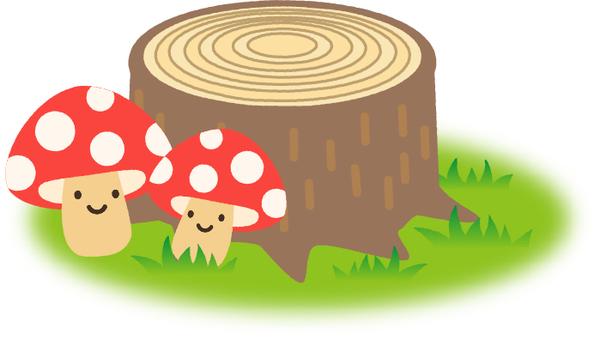 Stump and mushrooms