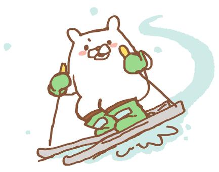 White bear and ski