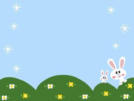 Rabbit parent and child