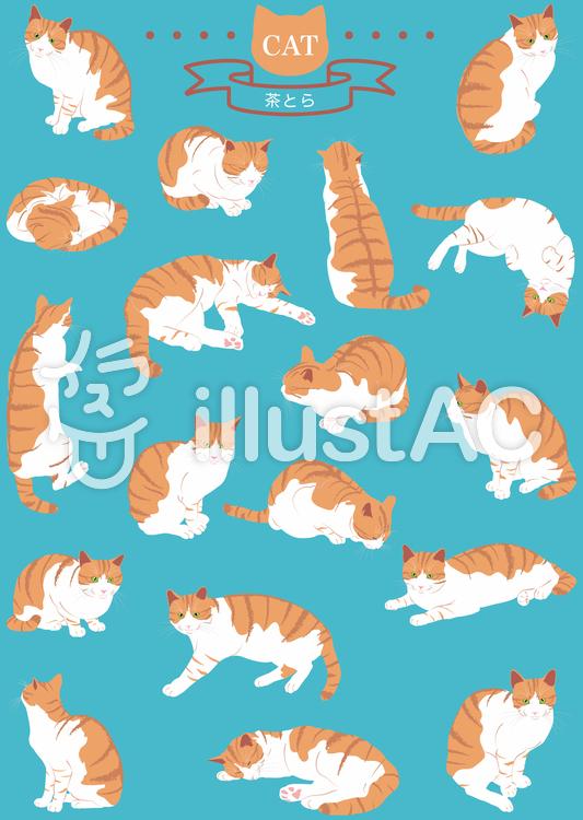 猫(リアル・茶とら)18ポーズのイラスト