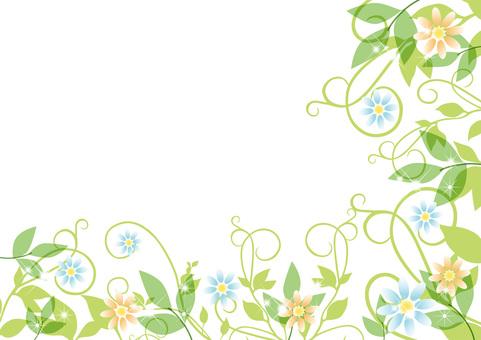 Vodka and flower frame
