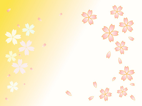 Cherry petal yellow and white background