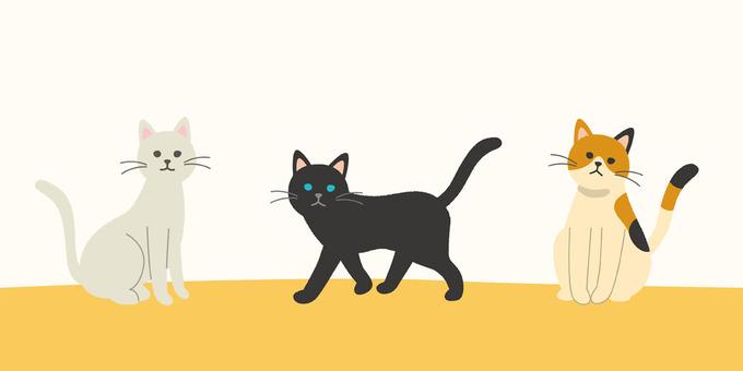 Cat _2