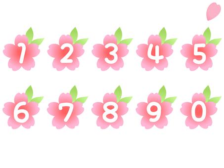 Sakura Number