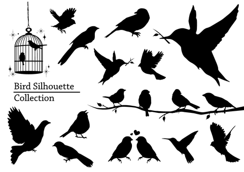 Bird's silhouette collection