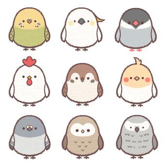 Icon bird collection