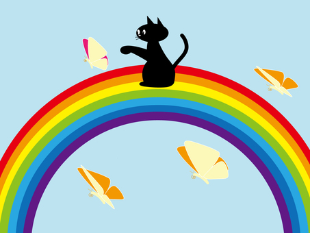 Butterfly and rainbow and cat