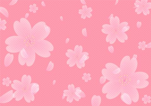 Background / WallPaper
