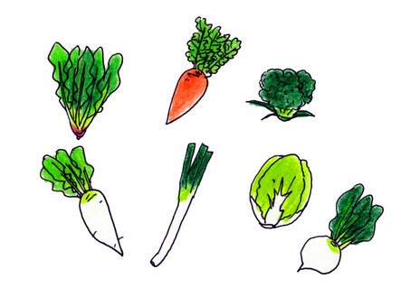 Winter vegetables 2