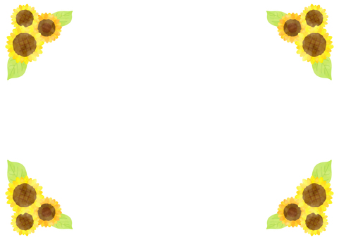 Sunflower background 5