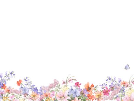 花框158  - 各種花的花框架框架