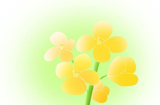 Dish の flowers 2