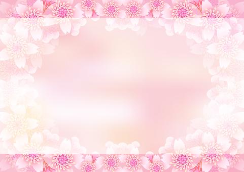 Cherry Blossoms & Board 20