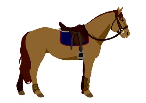Equestrian equestrian horse (brown hair)