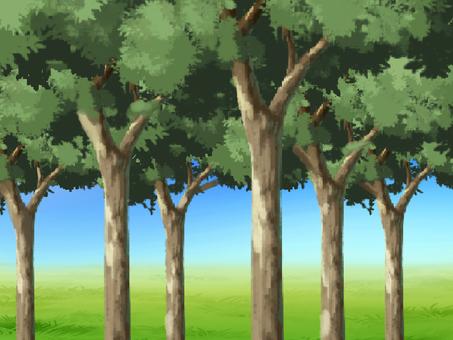 숲을 빠져 2