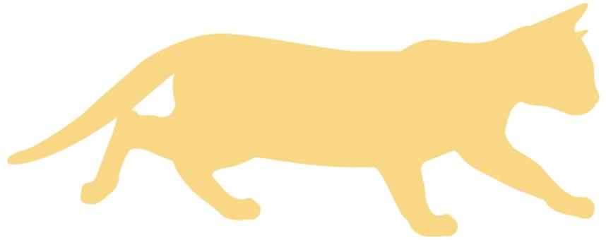 Cat's silhouette 29