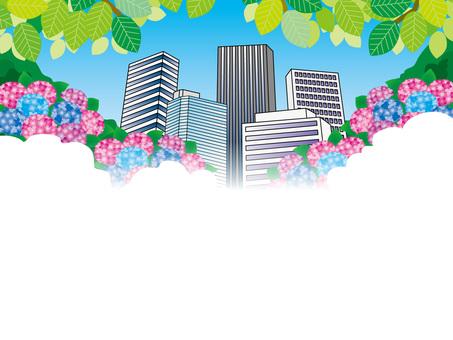 Hydrangea (51) Fresh green office area