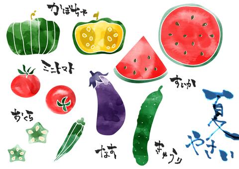 Illustration of summer vegetables (color)