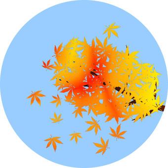Maple 2 (Mix)