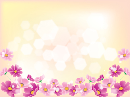 Cosmos _ glittering 2