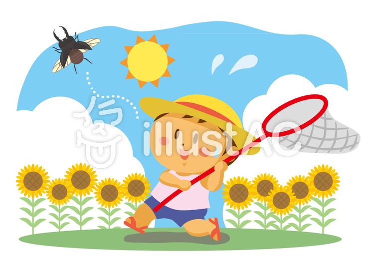 夏ひまわり畑で虫取りイラスト No 1135716無料イラストなら