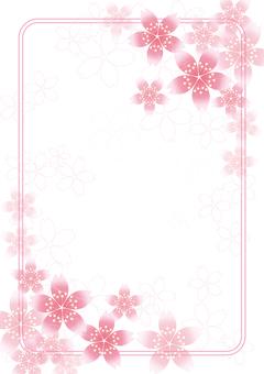 Sakura Sakura & Board 54