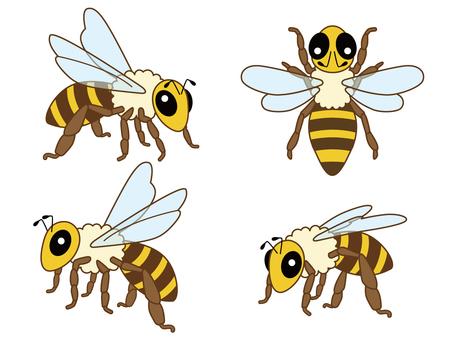 ミツバチ_15