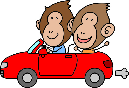 Driving of two monkeys